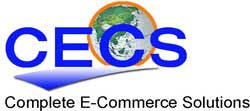 CECS OF CT LLC
